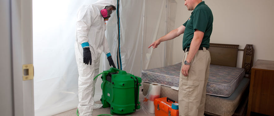 Fresno, CA mold removal process